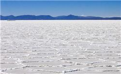 Bolivia's new lithium tsar says country should go it alone