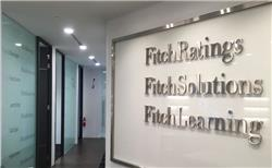 Fitch Solutions says volatility to continue driving metals prices lower