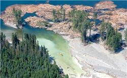 Mount Polley tailings pond remediation