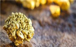 Novo acquires stake in Kalamazoo gold projec