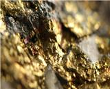 Gold rises as technical momentum builds despite stronger dollar